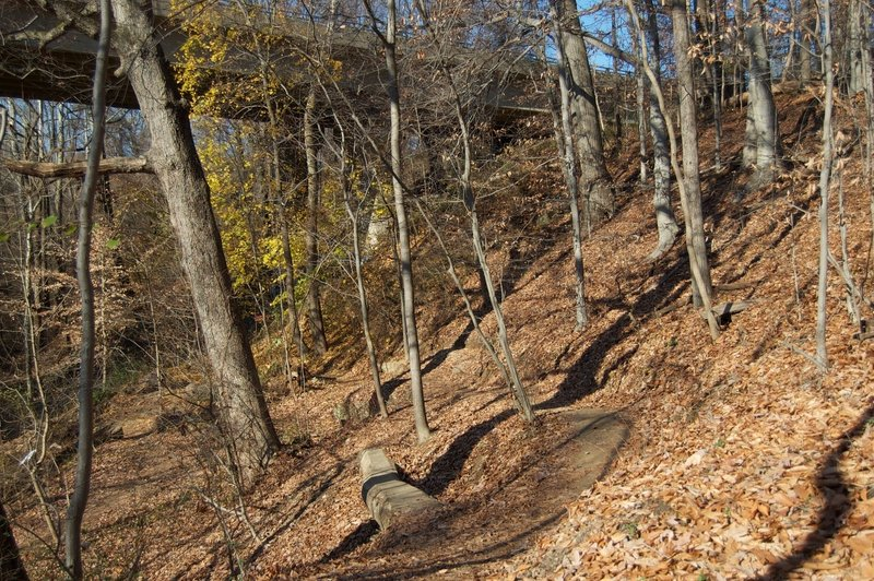The Wissahickon trails.