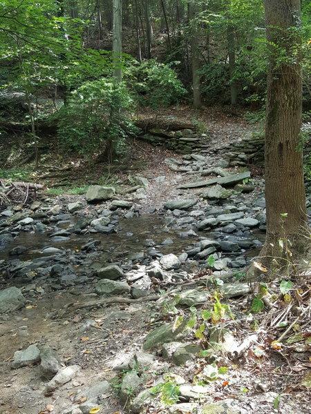 Cresheim Creek.