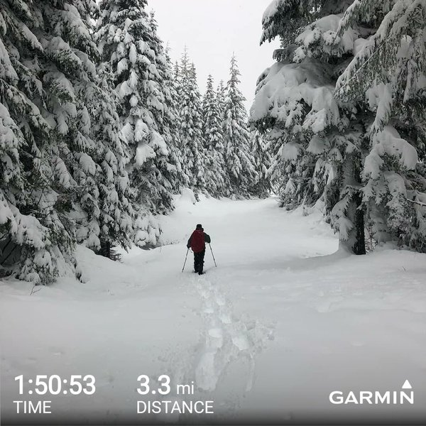 Snowshoeing the trail back down from the hut after a new snow fall.