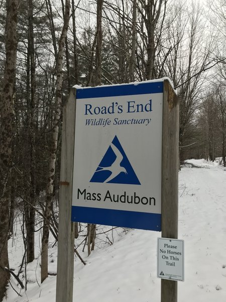Mass Audubon: Road's End Wildlife Sanctuary