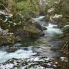 A selection of the rapids/cascades along Santiam River