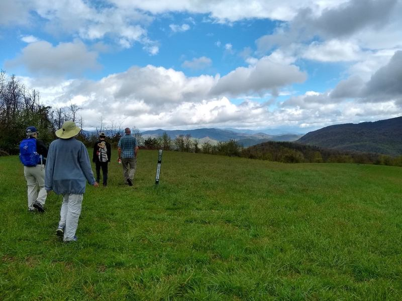 The summit of Blue Ridge Pastures at the end of the Trombatore Trail.