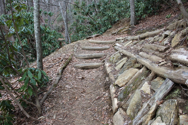 There is a significant climb as you enter the preserve, with lots of locust log stairs.