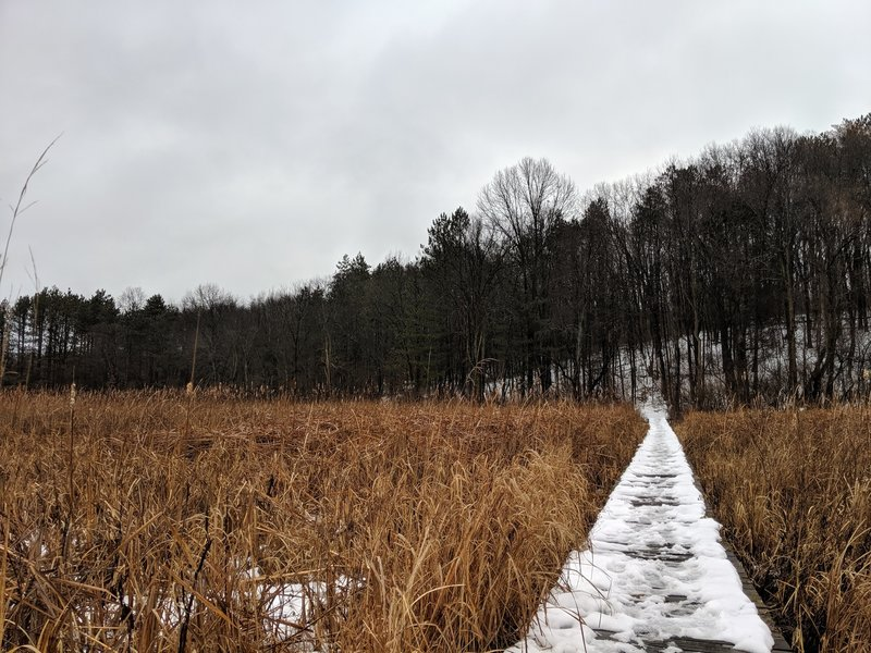 The trail exits the woods and out into the open, over a long, wooden bridge that is slanted in areas and a bit slick when it rains or snows