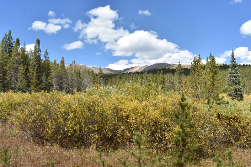 The view from the trailhead. Off the left, Homestake Peak is just out of view behind the trees, while Slide Lake lies in the deep pocket of this basin.