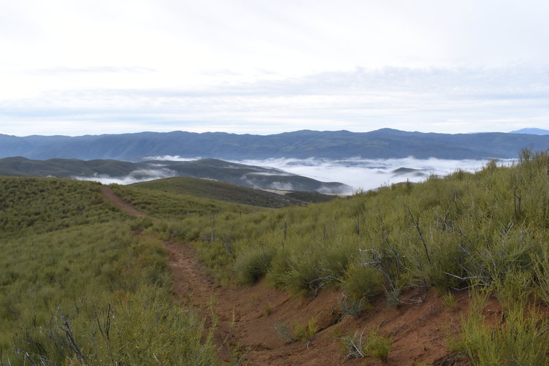 The ridgeline through Chamise