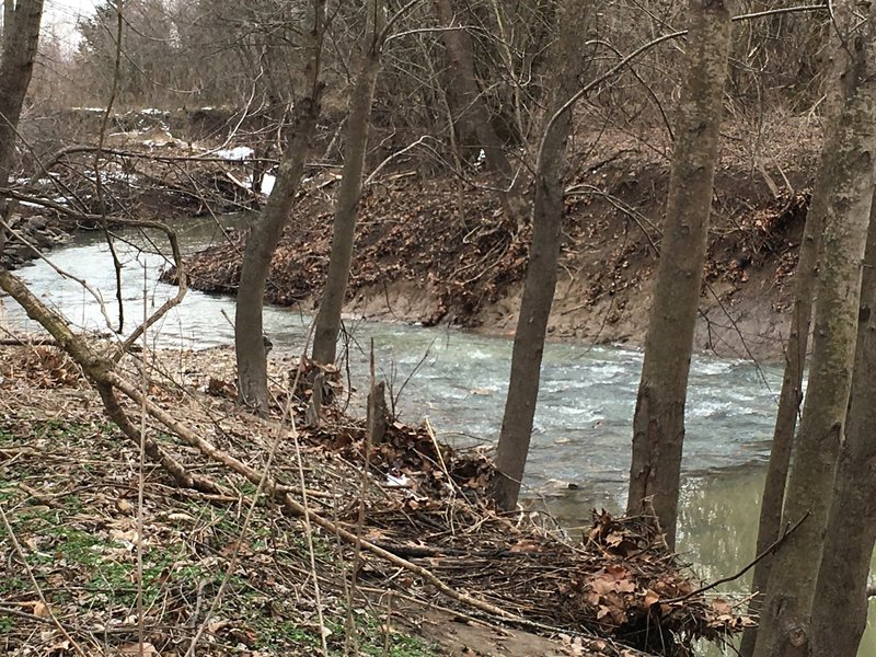 Hart Creek during higher water. This can be tough to cross!