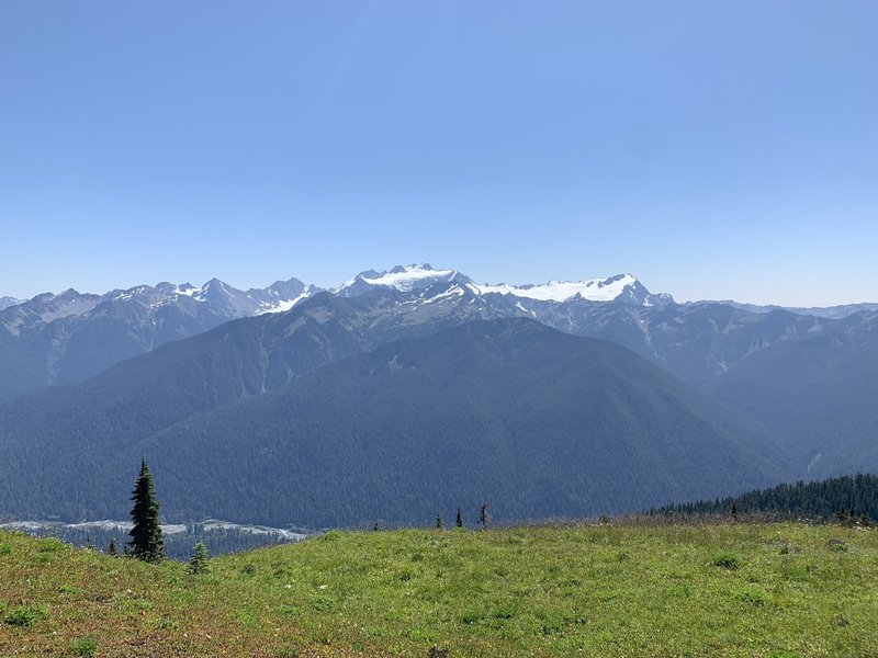View of the Olympic Peaks from the High Divide!