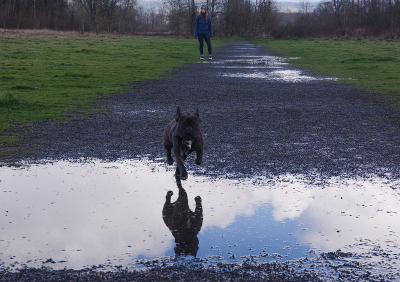 Enjoying 1000 acres of freedom on a wet but sunny February day.