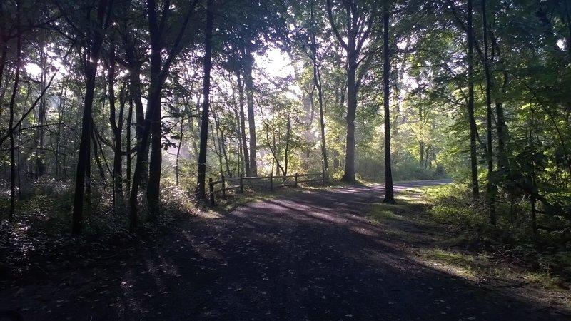 Perkiomen Trail north of Rt 113.