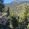 Lower Genoa Canyon Trail. Looking north west. Trail in lower left corner is indicative of trail condition.