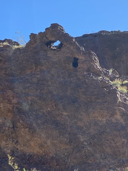 Goldstrike Canyon Trail: just happened to look up during a break and saw this little arch.