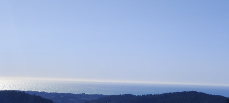 This is actually from Butano Fire Road, accessible 1.7 miles from the top of Ocean View trail.