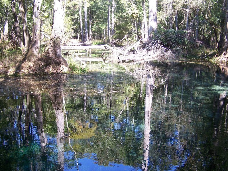 Naked Springs (Gilchrist County, FL)