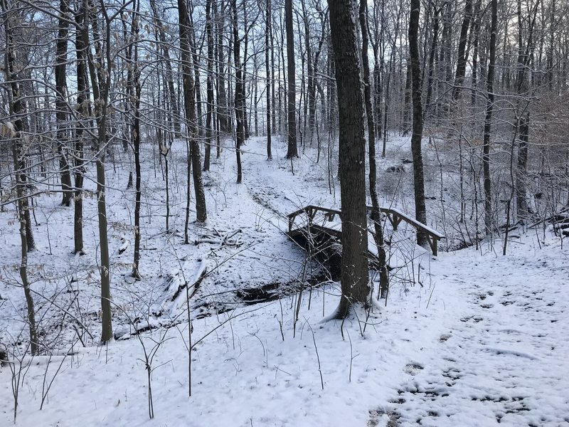 Bridge along trail. Location approximate.