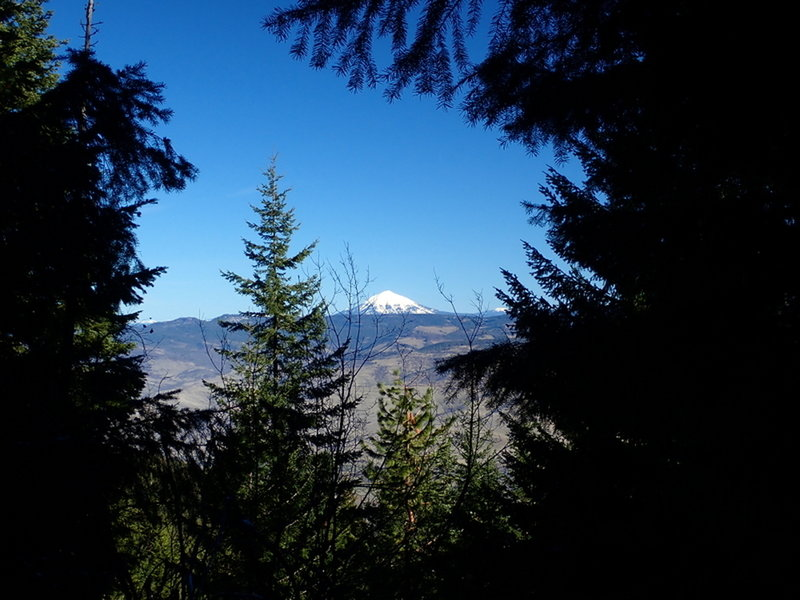Mount McLoughlin from the Upper Eastview Trail