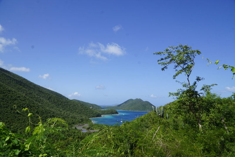 View in to Leinster Bay.