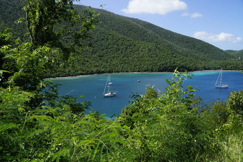 View of Leinster Bay from the trail to the ruins.