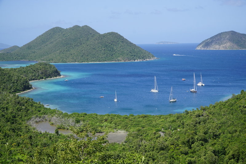 Wide view of Leinster Bay.