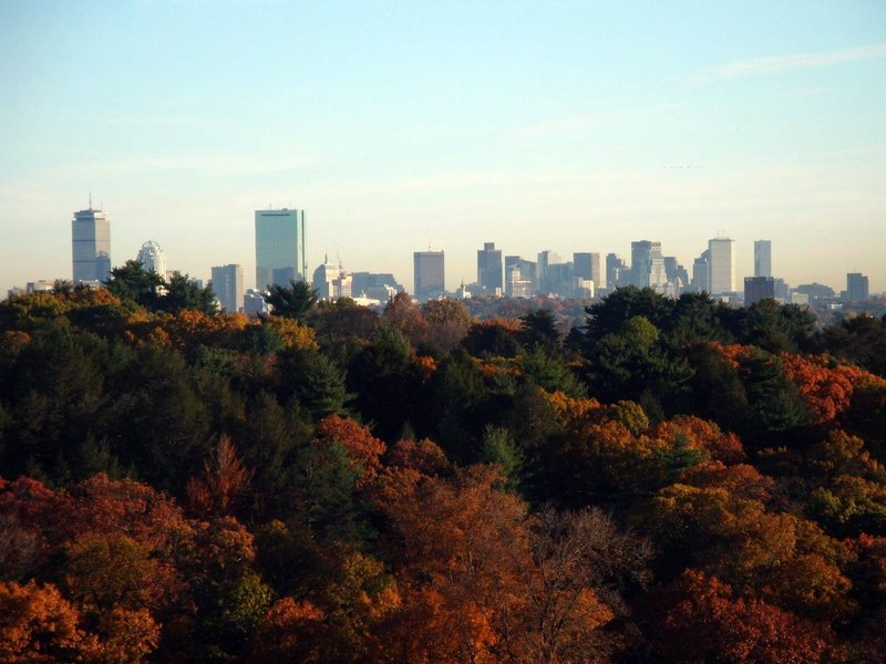 Boston Skyline from summit of Peters Hill