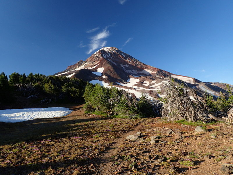 South Sister from the divide west of Camp Lake.
