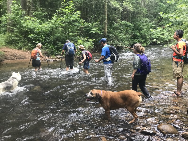 One of many water crossings on the North River Gorge Trail.