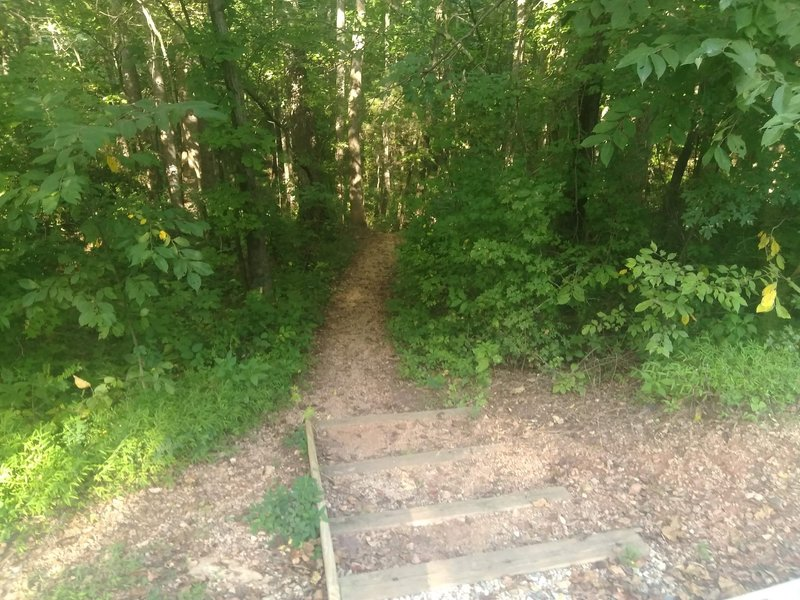 Stairs to Richland Creek Trail