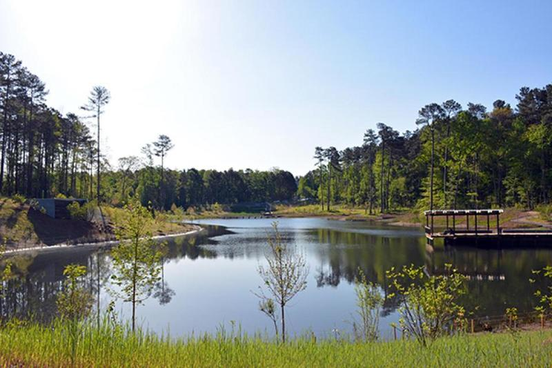 View of Duke Pond from Erwin Road