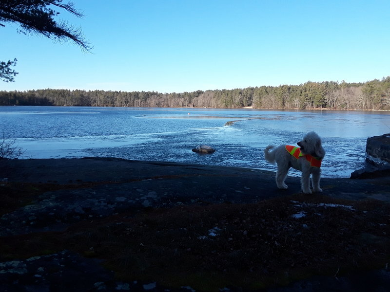 Jack reaches the south-east shore of Yawgoog.