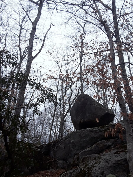 There are many glacial erratics to come across.