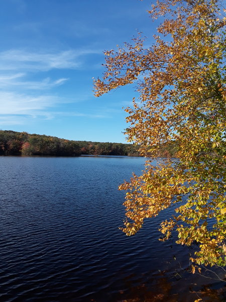 A blue autumn day on the pond.