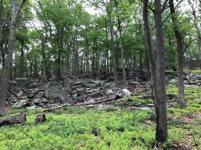 Enormous rock outcroppings on Rattlesnake Ridge.