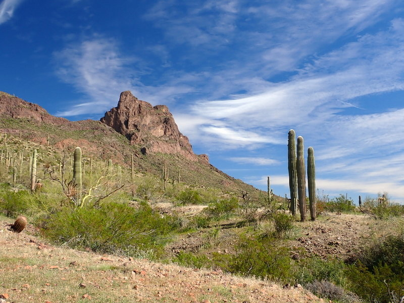 Picacho Peak from the Sunset Vista Trail