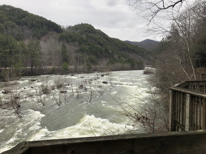 A view of the Ocoee River from the Rhododendron Trail.