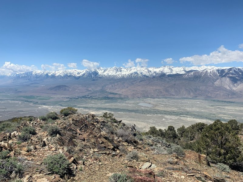 view of the sierra from black mountain summit