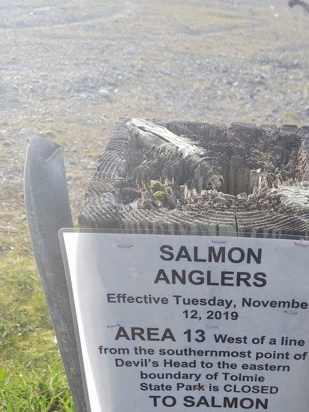 Solo Point Salmon Retention