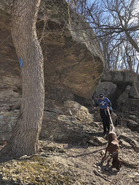 More amazing boulders beside the trail