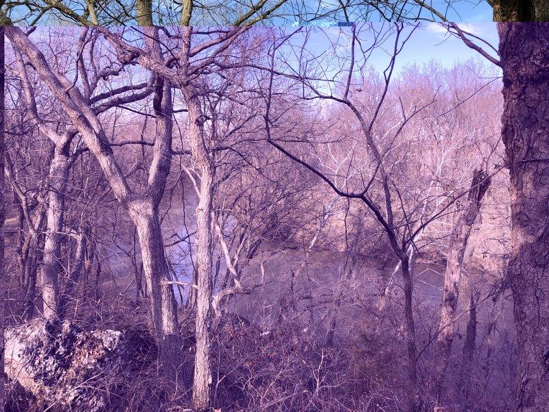 overlooking the Elk River