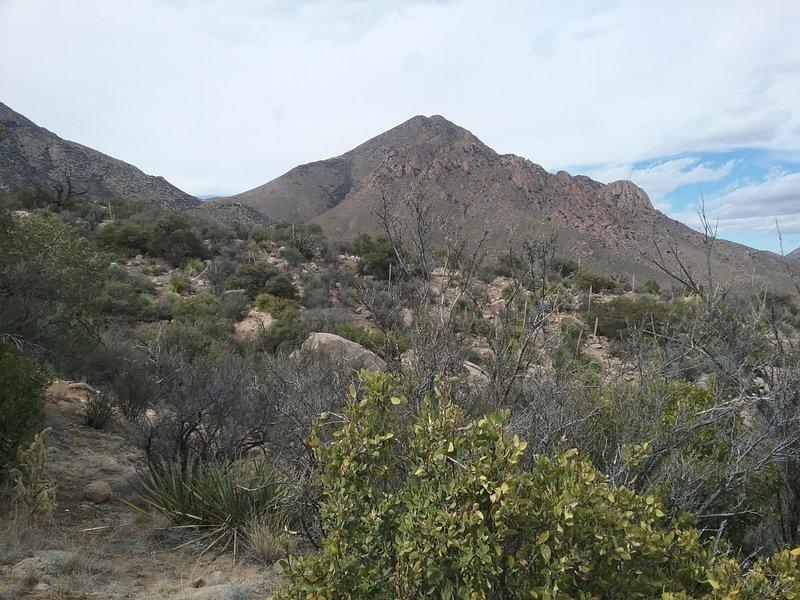 View of  Baylor Peak