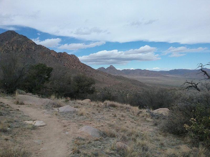 View of San Augustin Peak