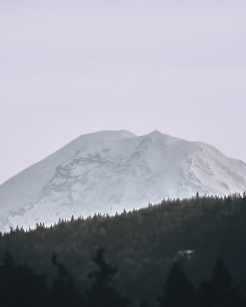Mount Rainier on the one clear day this Winter