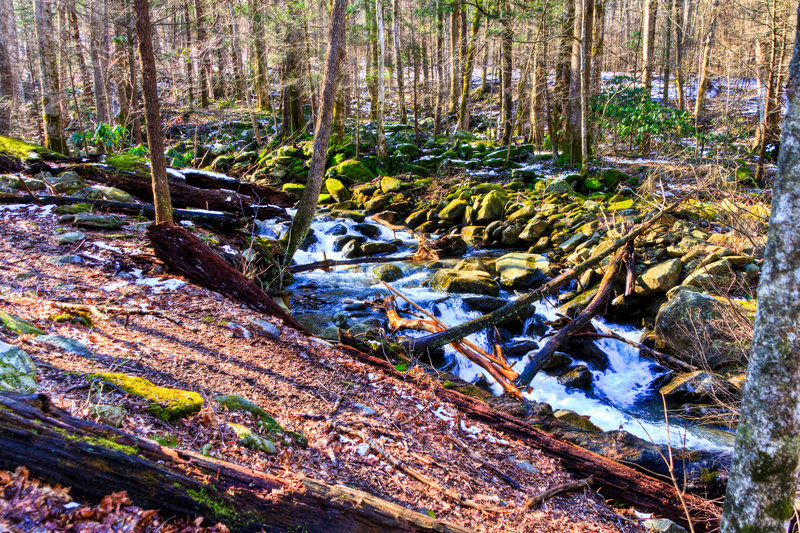 Great Smoky Mountains National Park - Rainbow Falls Trail