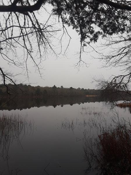 Reaching the destination, Schoolhouse Pond.