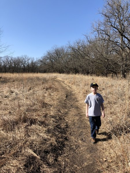 There are a lot of sections in this park that are open prairie and then woods. It's a neat combination.