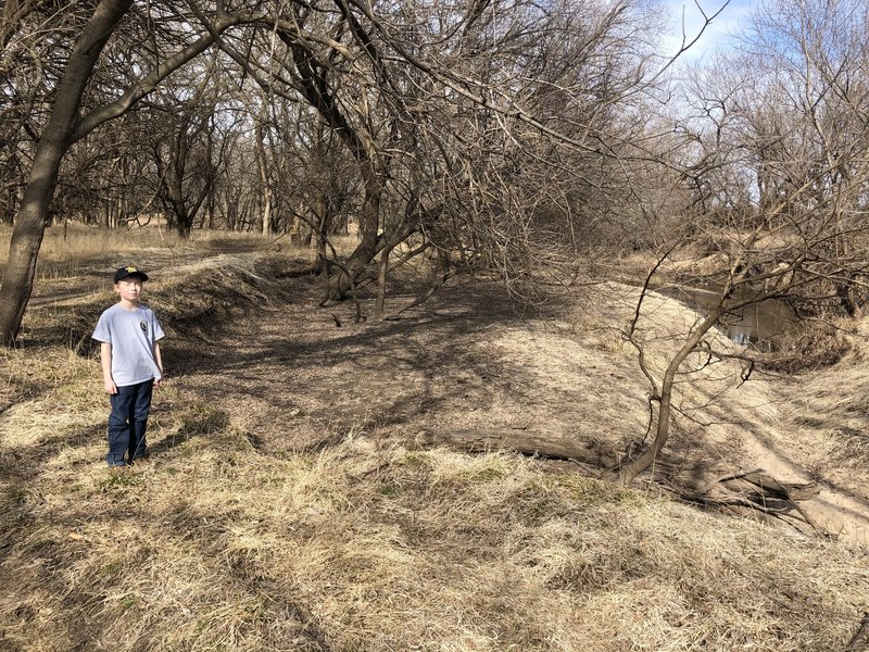 This is a really neat example of ground slump...where the creek has caused this 50ft diameter section of dirt to fall downwards about 5 feet.