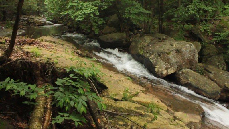 Stream + Boulders, 2009/06/27