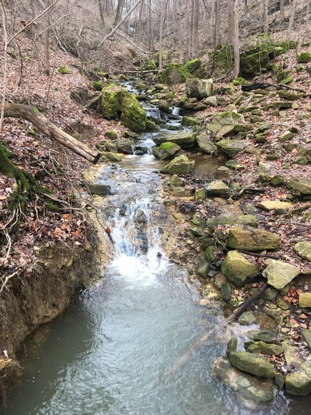 Creek below waterfall