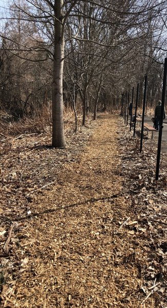 Mulch applied by partners and members of the West River Watershed Coalition on March 7, 2020