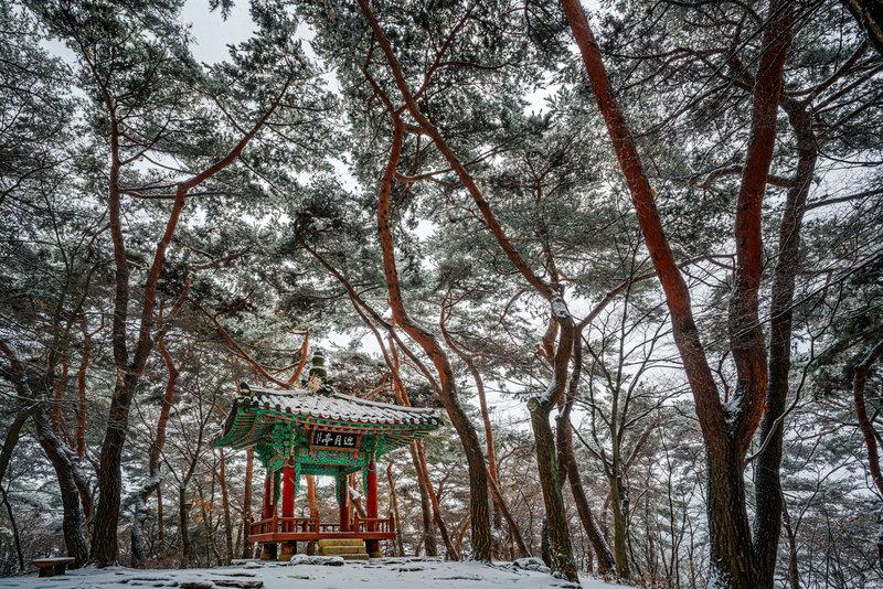 Small pavilion among old trees at Namhansanseong Fortress