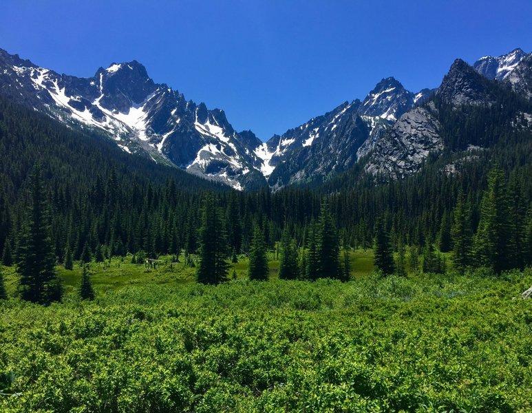 A meadow along the Stuart Lake Trail.